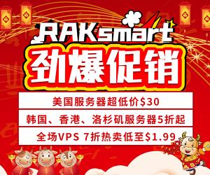 Raksmart服务器促销