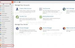 hostwinds重启域名服务器教程